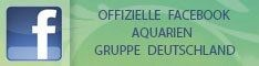 Facebook Aquariengruppe